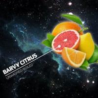 Табак для кальяна Dark Side Barvy Citrus (100 г)