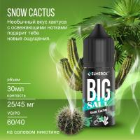 Жидкость Big Salt Snow Cactus (25 мг/30 мл)