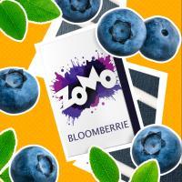 Табак для кальяна ZOMO Bloomberrie (50 г)