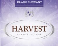 Табак сигаретный Harvest Black Currant (30 г)