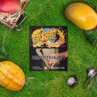 Табак для кальяна Malaysian Juicy Mango (50 г)