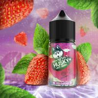 Жидкость Husky Mint Series Salt Red Garden (20 мг/30 мл)